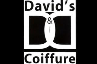 David's 2_opt