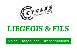 Liegeois_virton_opt