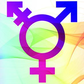 Réunion du groupe trans @ CAL Luxembourg | Libramont-Chevigny | Wallonie | Belgique